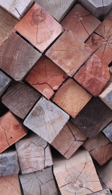 wood-species-2
