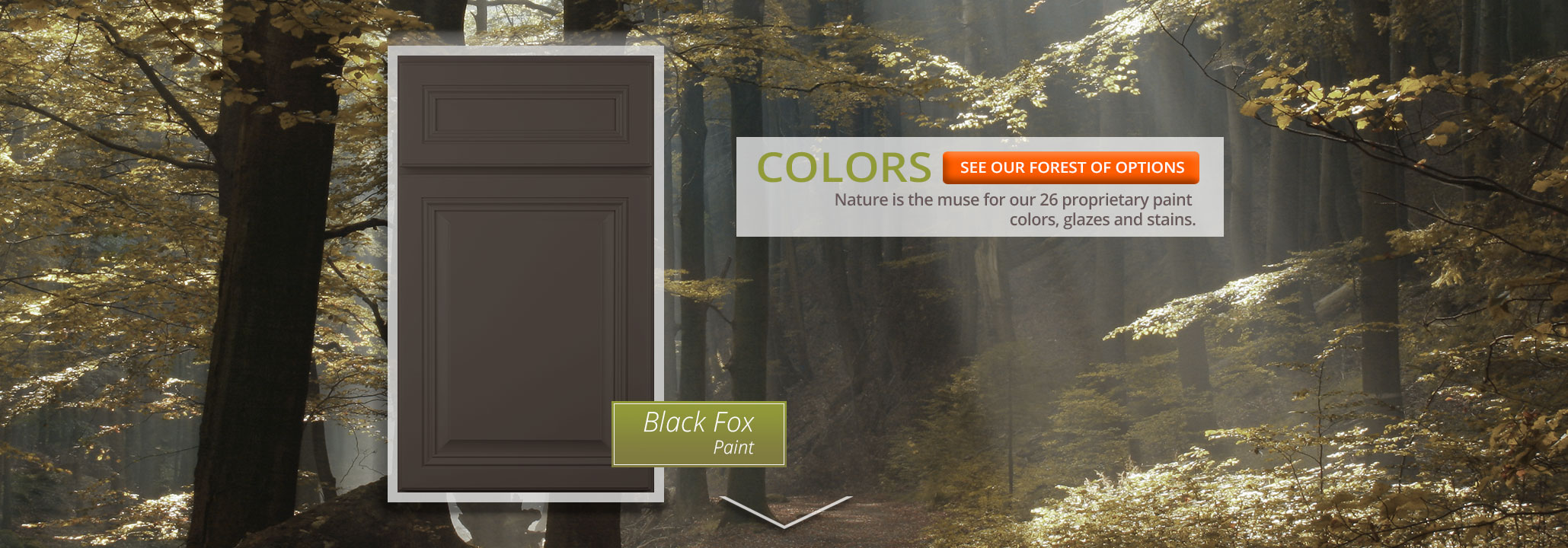 Woodmont Cabinetry Black Fox Paint Finish
