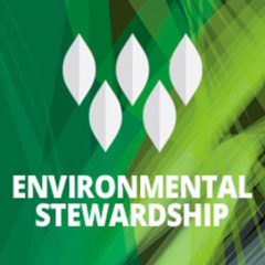 Woodmont Cabinetry Continues Its Commitment To Environmental Stewardship